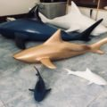 shark art limited edition