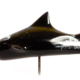 predator finarts shark art
